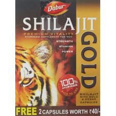Dabur Shilajit Gold 10 Nos Cap