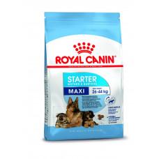 Royal Canin Maxi Starter (Mother & Babydog) 4 Kg