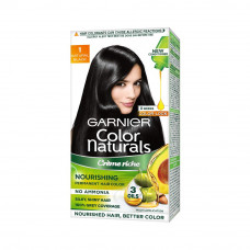 Garnier Color Naturals 1 Natural Black