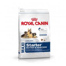 Royal Canin Maxi Starter (Mother & Babydog) - 1 kg
